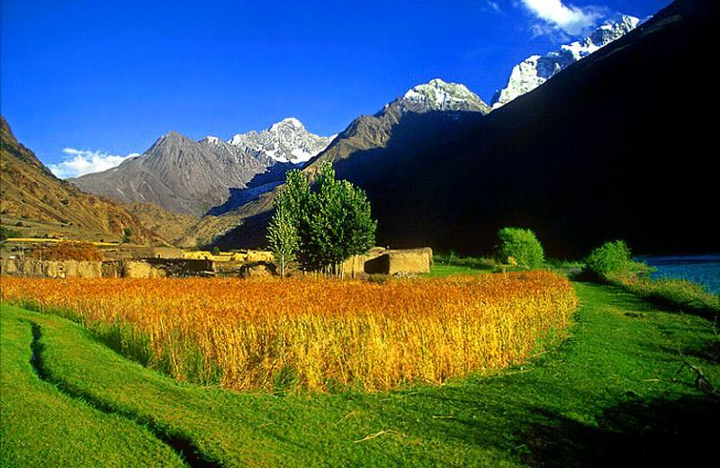 Kalasha Valleys
