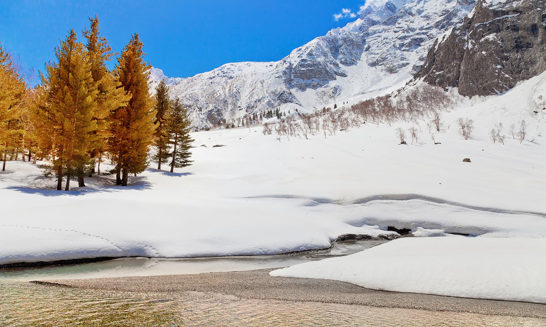 Naltar Valley is the ideal spot to unleash your adventurous spirit